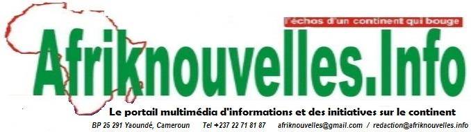 Afriknouvelles - L'Actualité et les échos des initiatives sur le continent.